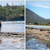 Tasman Peninsula_Tessellated Pavement